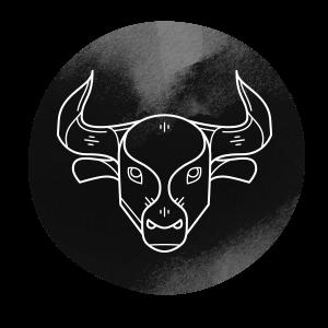 https://stellarium.bold-themes.com/light/wp-content/uploads/sites/6/2018/02/horoscope_dark_02.png