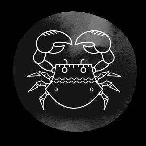 https://stellarium.bold-themes.com/light/wp-content/uploads/sites/6/2018/02/horoscope_dark_04.png